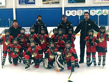 Local hockey teams snag silver medals at recent tournaments