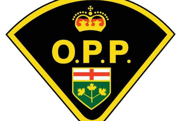 Lindsay man killed in single-vehicle crash on Highway 35