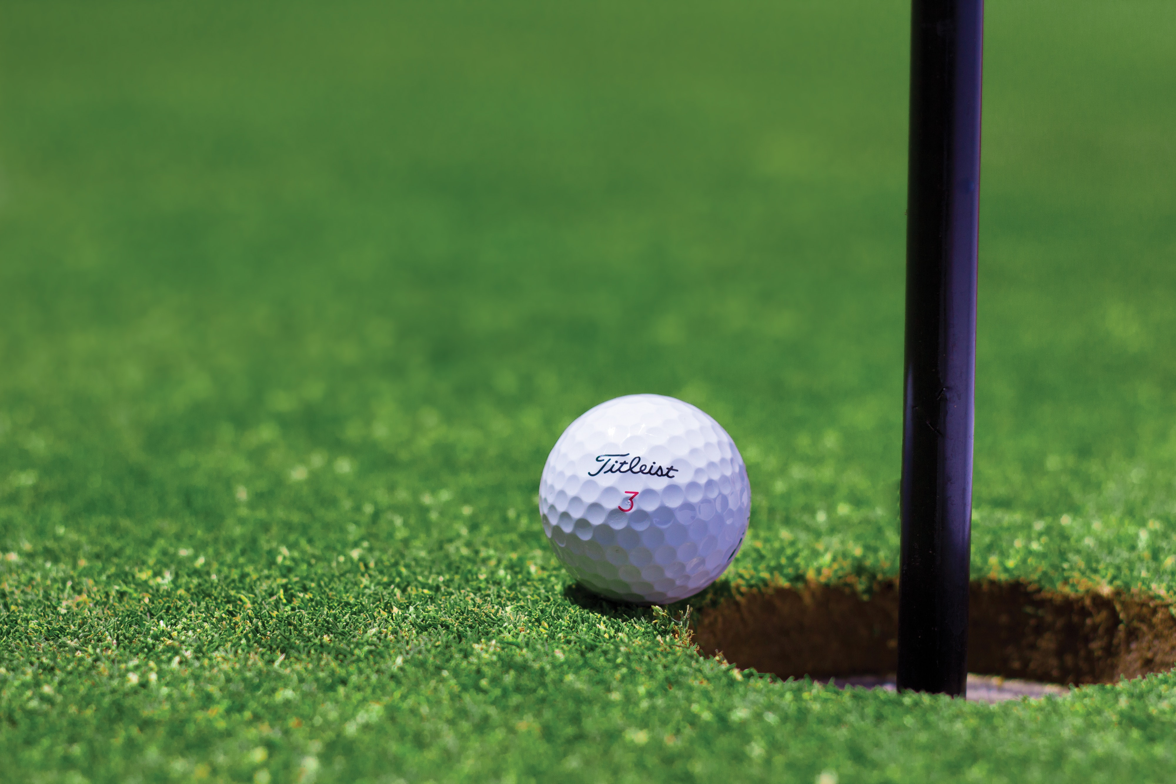 Seven groups to receive grants through Township's charity golf tournament