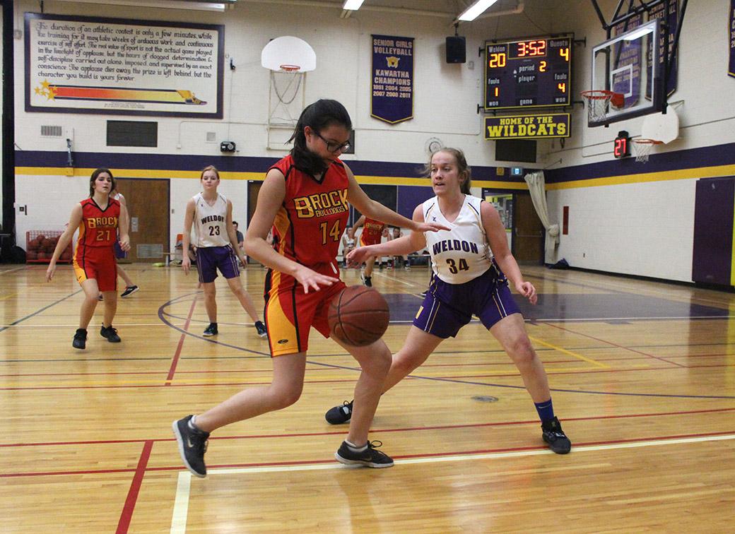 Girls basketball teams at Brock High ready for postseason