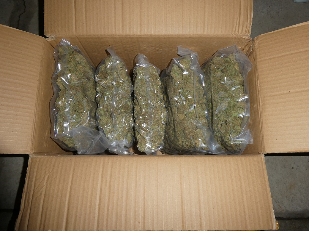 Police allegedly seize 240 pounds of illegal cannabis during traffic stop in Northumberland