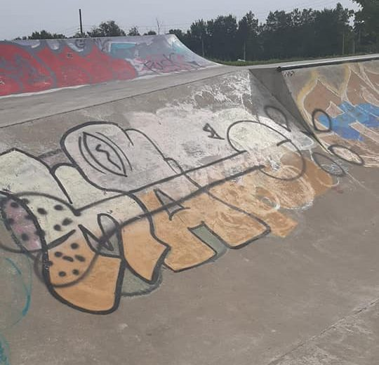 More vulgar vandalism at Cannington skatepark