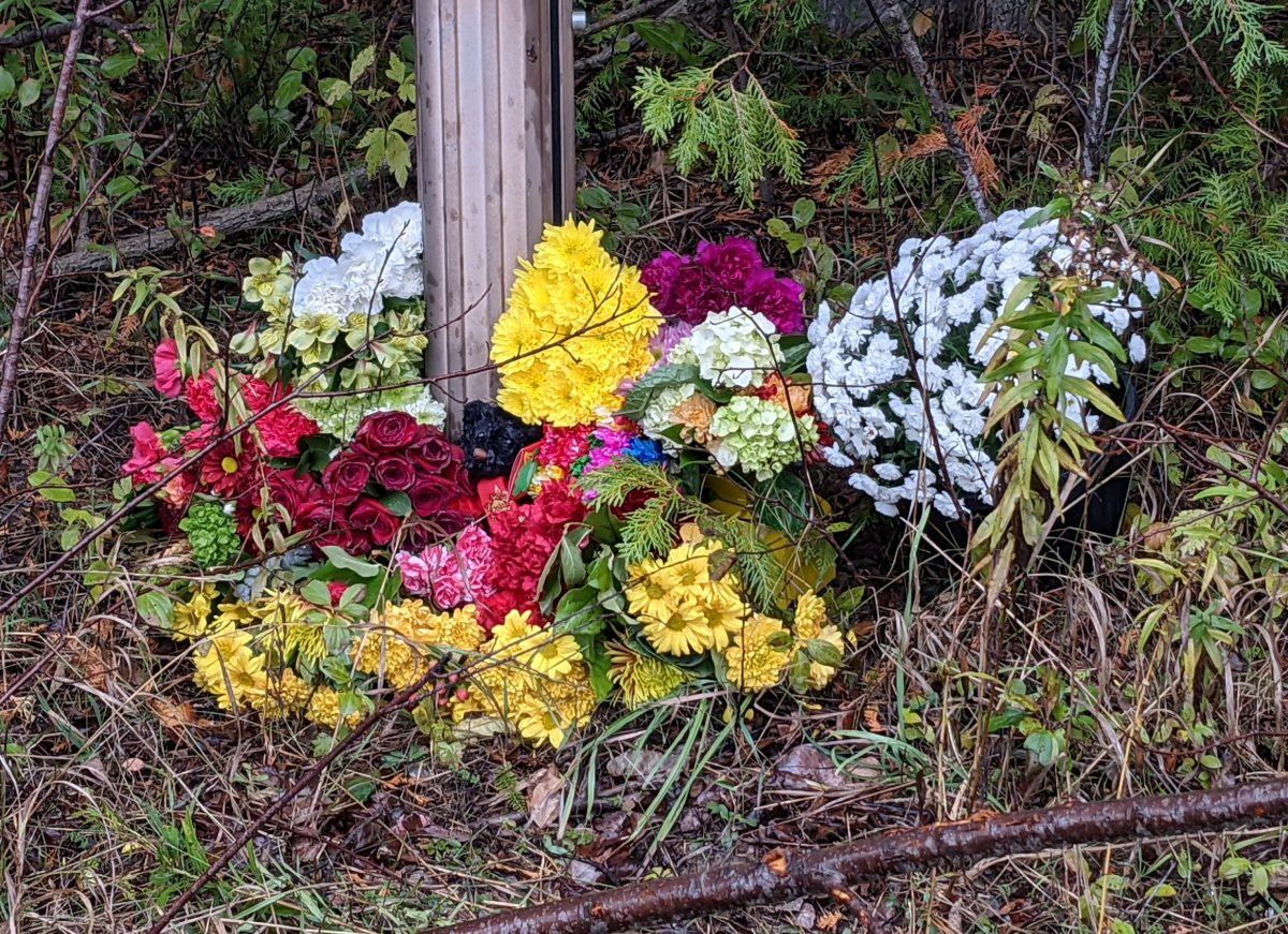 Community rallying for families of collision victims